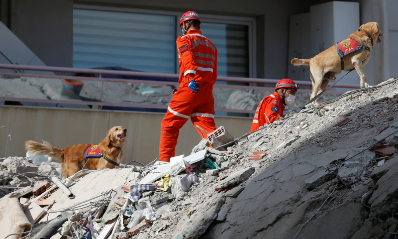 Turkey earthquake: 70-year-old man rescued from rubble as death toll hits 51
