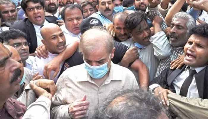 Punjab govt approves release of Shehbaz Sharif, Hamza on parole