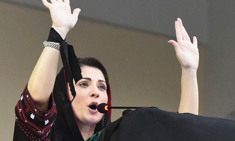 Not afraid of cases, arrests: Maryam Nawaz