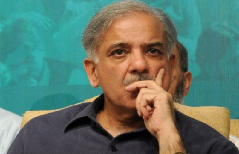 PML-F delegation to meet Shahbaz Sharif today