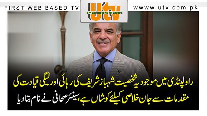 شعیب اختر کا بھارت کو شکست دینے والے فائٹر احمد مجتبیٰ کیلئے بڑا اعلان، پاکستانیوں کو خوش کر دیا