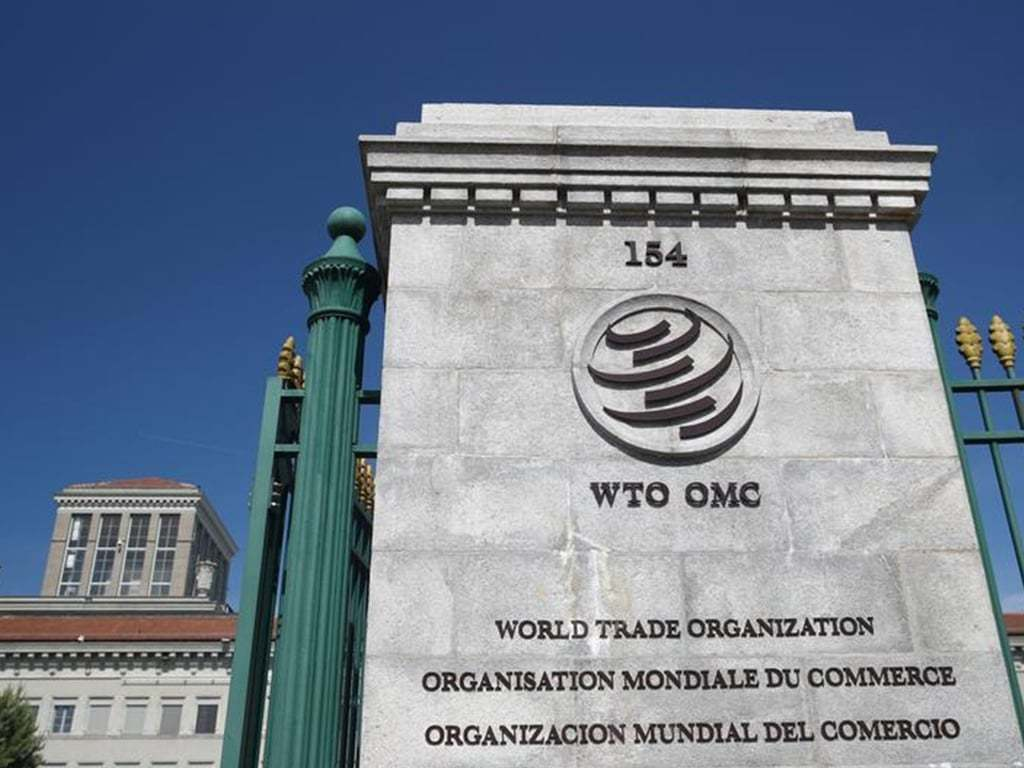 Hopes for WTO momentum as new boss takes charge